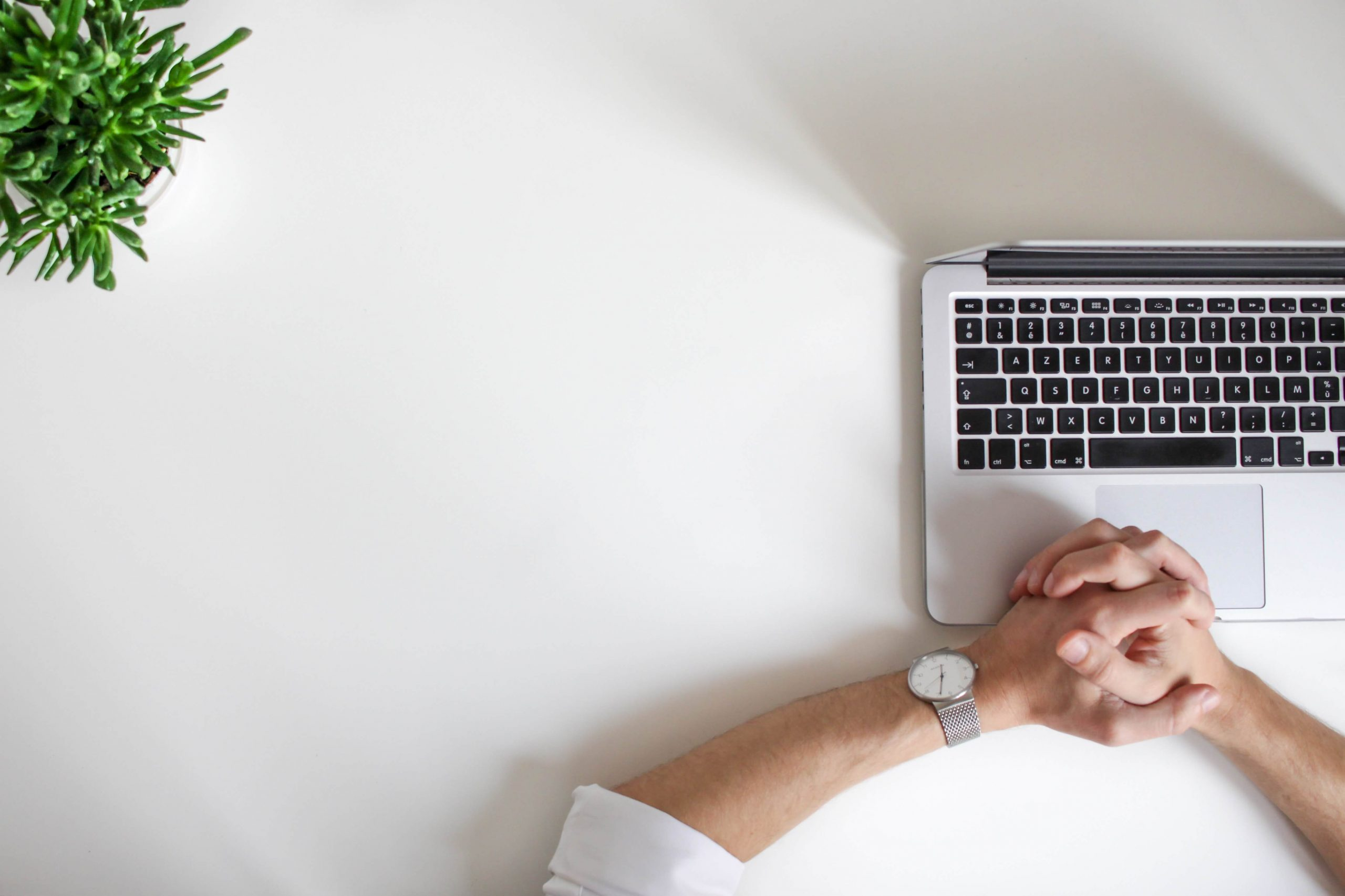 Man working on laptop on white desk with plant